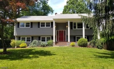 Scotch Plains Twp. Single Family Home For Sale: 881 Raritan Rd