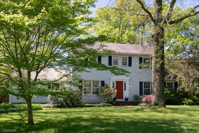 Montgomery Twp. Single Family Home For Sale: 21 Bayberry Ln