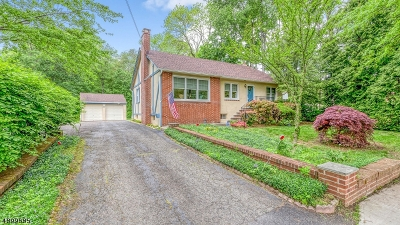 Long Hill Twp Single Family Home For Sale: 374 Main Ave