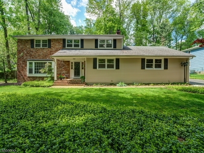 Berkeley Heights Single Family Home For Sale: 473 Mountain Ave