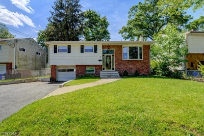 Parsippany-Troy Hills Twp. Single Family Home For Sale: 41 Rockaway Blvd
