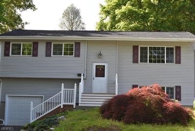 Ogdensburg Boro Single Family Home For Sale: 9 Beardslee Hill Dr