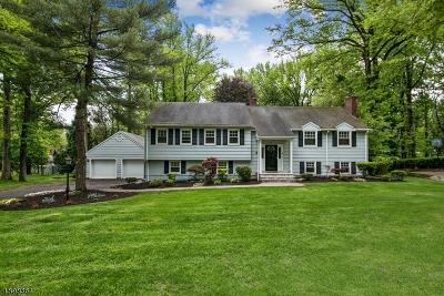 Scotch Plains Twp. Single Family Home For Sale: 1949 Wood Rd