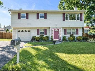 Newton Town Single Family Home For Sale: 14 Birch Dr