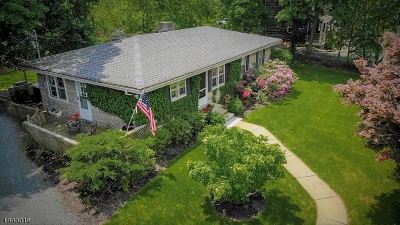 Bedminster Twp. Single Family Home For Sale: 2450 Lamington Rd