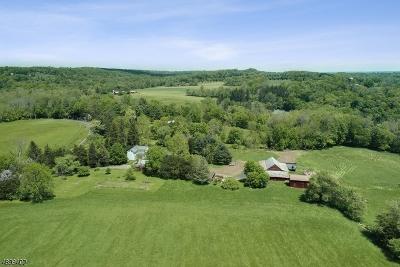 Delaware Twp. Single Family Home For Sale: 723 Rosemont Ringoes Rd