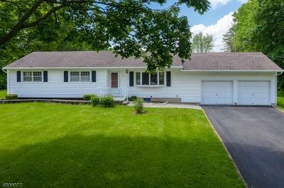 Clinton Twp. Single Family Home For Sale: 10 Wayside Ln
