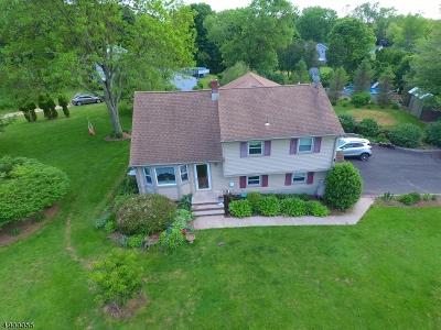 Hillsborough Twp. Single Family Home For Sale: 116 Hammler Rd