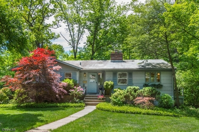 Berkeley Heights Twp. Single Family Home For Sale: 125 Hampton Dr