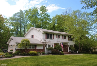 Parsippany-Troy Hills Twp. Single Family Home For Sale: 4 Granada Dr