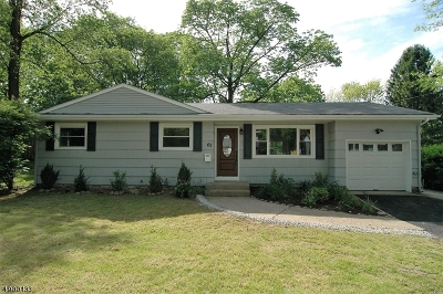 Newton Town Single Family Home For Sale: 62 Paterson Ave