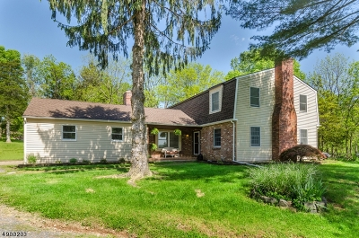 Holland Twp., Milford Boro Single Family Home For Sale: 16 Sleepy Hollow Dr