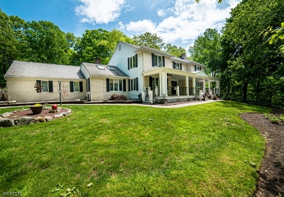 Boonton Twp. Single Family Home For Sale: 10 Farber Hill Rd