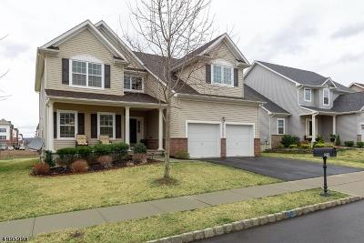 Franklin Twp. Single Family Home For Sale: 29 Willocks Cir