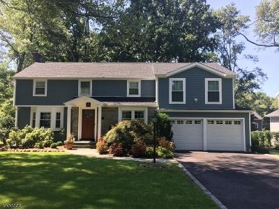 Chatham Boro NJ Rental For Rent: $6,500