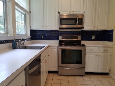 Bedminster Twp. NJ Rental For Rent: $2,100