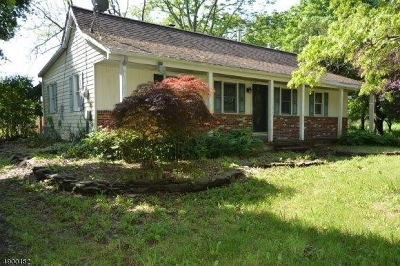Readington Twp. Single Family Home For Sale: 1054 Route 523