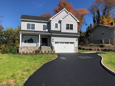 Hanover Single Family Home For Sale: 300 Whippany Rd