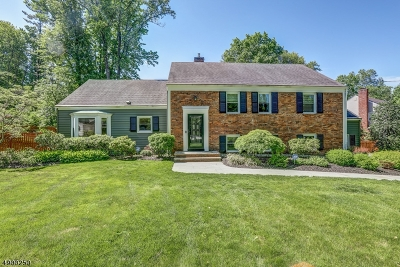 Morris Twp. Single Family Home For Sale: 22 Old Glen Rd