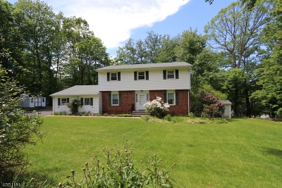 Randolph Twp. Single Family Home For Sale: 19 Dogwood Trl