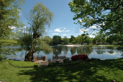 Parsippany-Troy Hills Twp. Single Family Home For Sale: 3 Lake View Ave