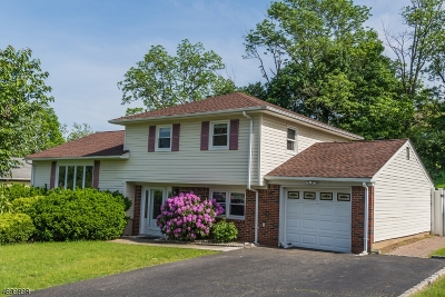 Parsippany-Troy Hills Twp. Single Family Home For Sale: 1 Ser Del Dr