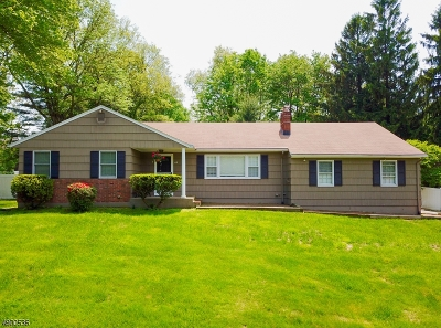 Randolph Twp. Single Family Home For Sale: 42 Treaty Rd