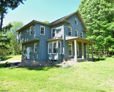 Long Valley Single Family Home For Sale: 161 Parker Rd