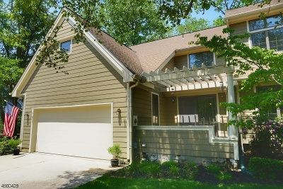 Lambertville City Condo/Townhouse For Sale: 5 Waterford Ct