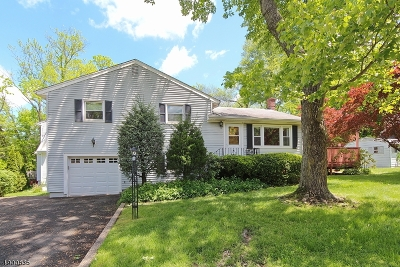 Summit Single Family Home For Sale: 2 Greenfield Ave