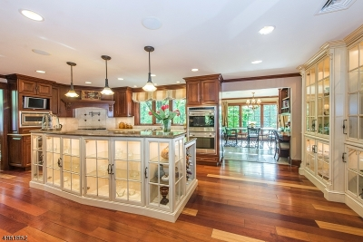 Mountain Lakes Boro Single Family Home For Sale: 078 Tower Hill Rd