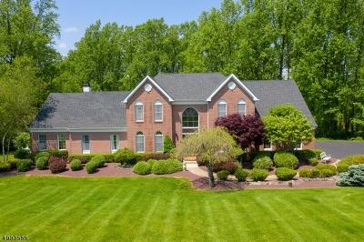 Bethlehem Twp. Single Family Home For Sale: 9 Rockhill Dr