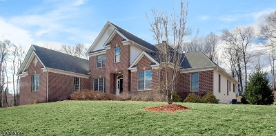 Mount Olive Twp. Single Family Home For Sale: 10 Sovereign Dr