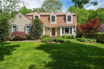 Morris Twp. Single Family Home For Sale: 14 Applewood Ln