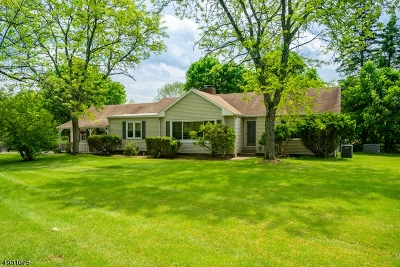 Readington Twp. Single Family Home For Sale: 17 Meadow Rd