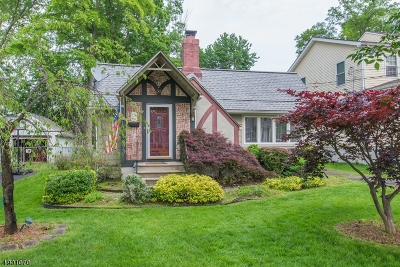Parsippany-Troy Hills Twp. Single Family Home For Sale: 30 Lincoln Ave