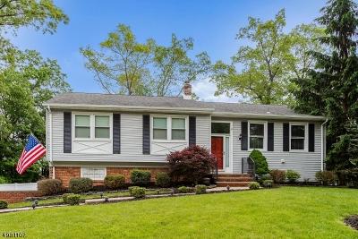 Roxbury Twp. Single Family Home For Sale: 23 Cedar Ln