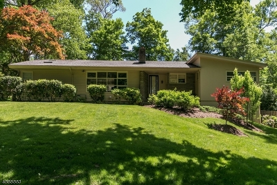 Berkeley Heights Twp. Single Family Home For Sale: 29 Plymouth Dr