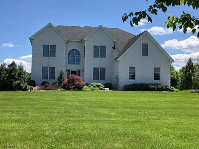 Alexandria Twp. Single Family Home For Sale: 6 Balmoral Dr