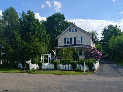 Readington Twp. Single Family Home For Sale: 9 Whitehouse Ave