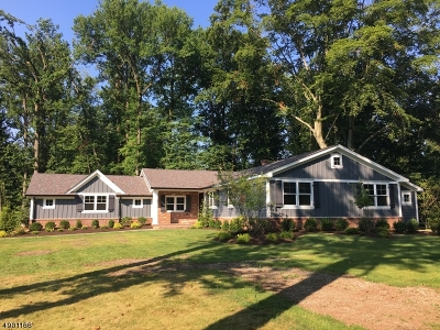 Scotch Plains Twp. Single Family Home For Sale: 13 Black Birch Rd