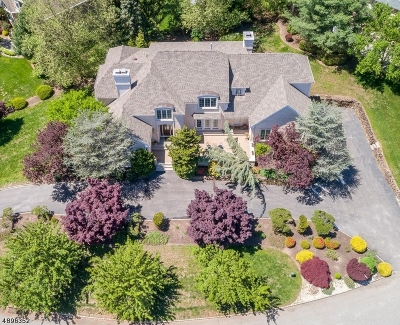 Montville Twp. Single Family Home For Sale: 9 Michelle Way