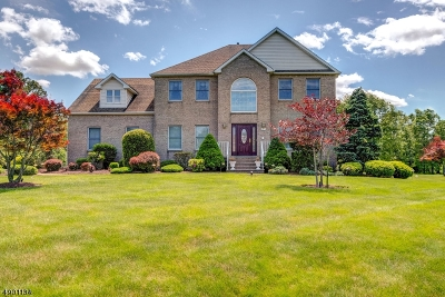 Hillsborough Twp. Single Family Home For Sale: 213 Fairfield Ln