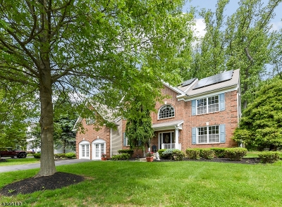 Franklin Twp. Single Family Home For Sale: 4 Woodfield Ct