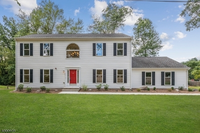 Franklin Twp. Single Family Home For Sale: 544 Louis Ave