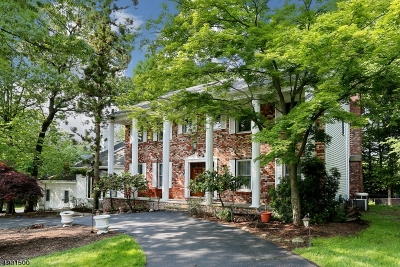 Franklin Lakes Boro Single Family Home For Sale: 750 Natures Way
