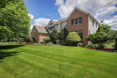 Montgomery Twp. Single Family Home For Sale: 104 Millers Grove Rd