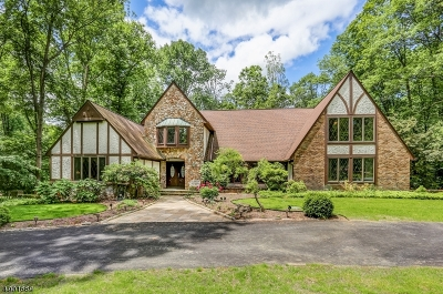 Sparta Twp. Single Family Home For Sale: 17 Brookside Dr
