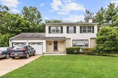 Somerset Single Family Home For Sale: 8 Heather Dr