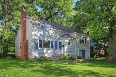 Fanwood Boro Single Family Home For Sale: 176 Marian Ave